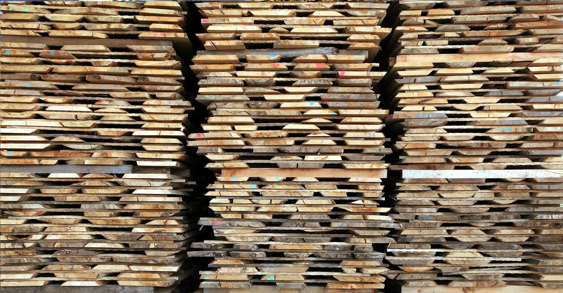 Tavole faggio 28 images tavole faggio massello grezzo - Tavola legno lamellare faggio ...